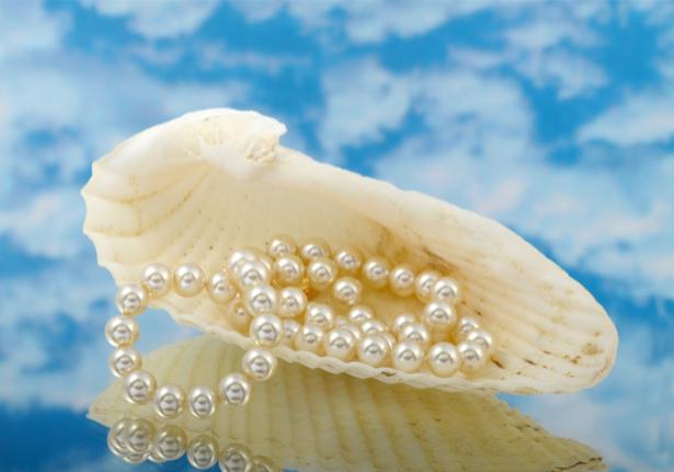Фотообои ракушка жемчуг жемчужина (sea-0000211)