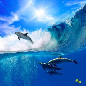 Фотообои дельфин на волне (animals-0000070)