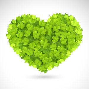 Фотообои сердце из зеленых листьев (background-0000373)