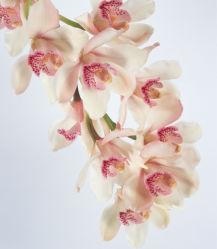 flowers-0000058