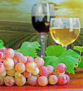 Фотообои на кухню бокал вина (food-0000225)