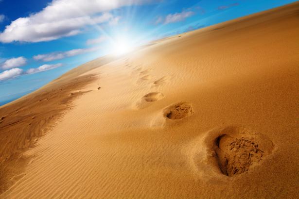 Фотообои следы в пустыне (nature-00597)