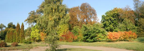 Фотообои парковый ландшафт (panorama_0000017)