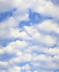 sky-0000039