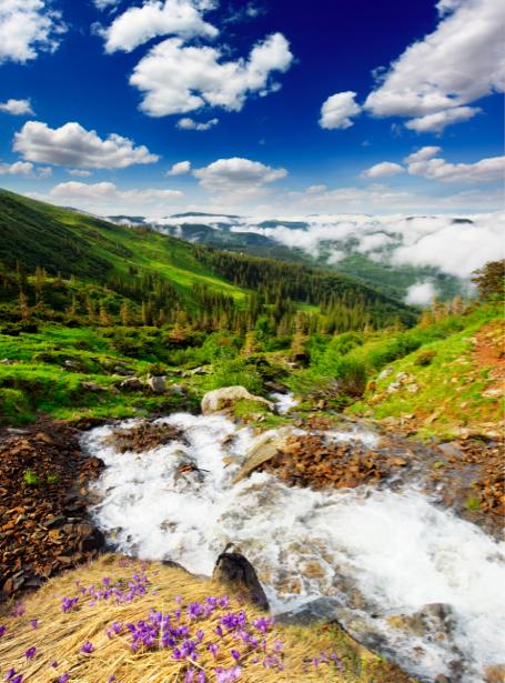 Фотообои горная река, горы (nature-00325)