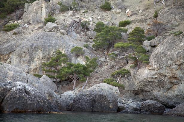 Фотообои море крымские горы (nature-00626)