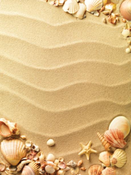 Фотообои на песке морские ракушки (sea-0000106)