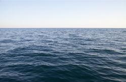 sea-0000261