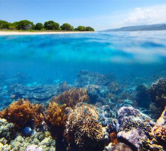 Фотообои море берег остров подводный мир (sea-0000295)