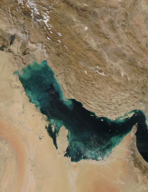 Фотообои на стену песочная фактура (terra-00218)